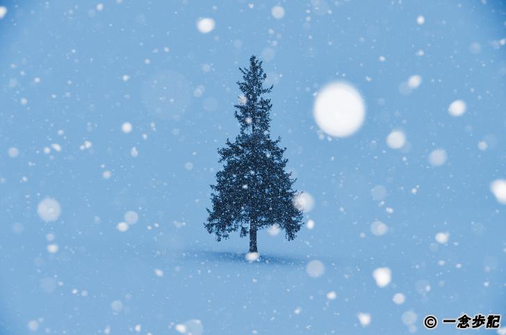 真冬のイメージ