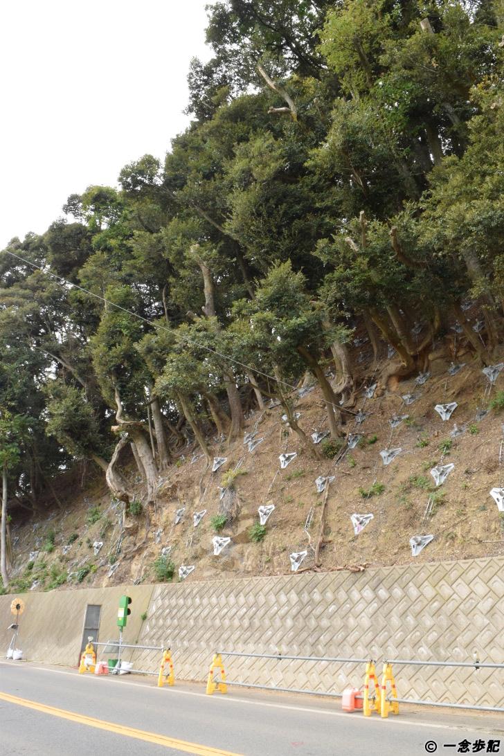 土砂崩れが起きそうな斜面
