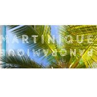 une échappée en Martinique: et pourquoi pas en version panoramique ?