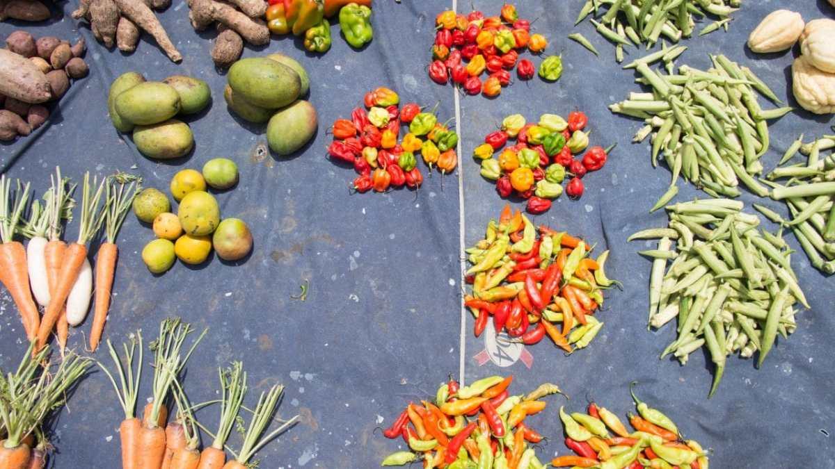 couleurs et ambiances de marché