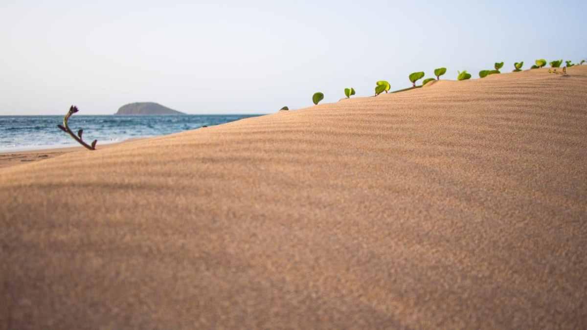 des lignes de sable