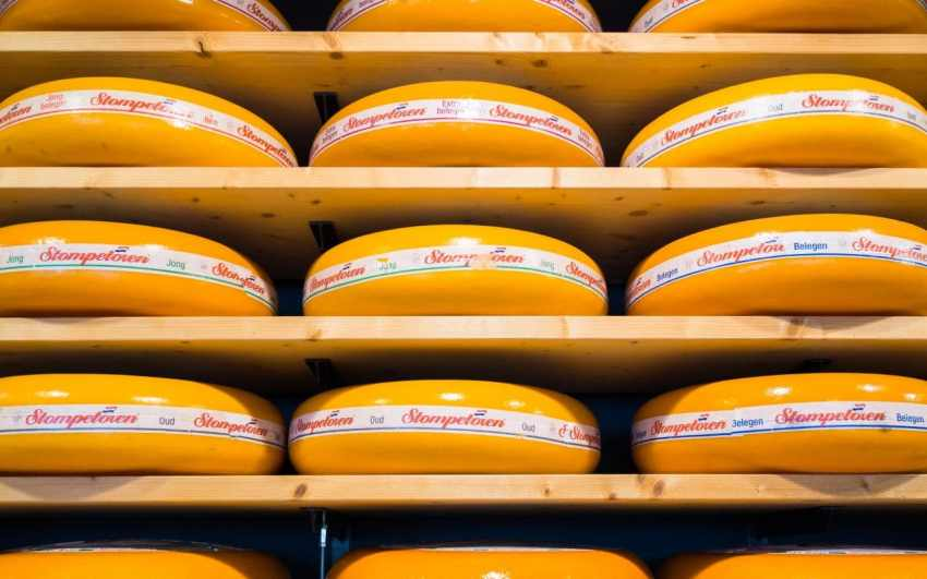 gouda, pays bas, hollande, fromage