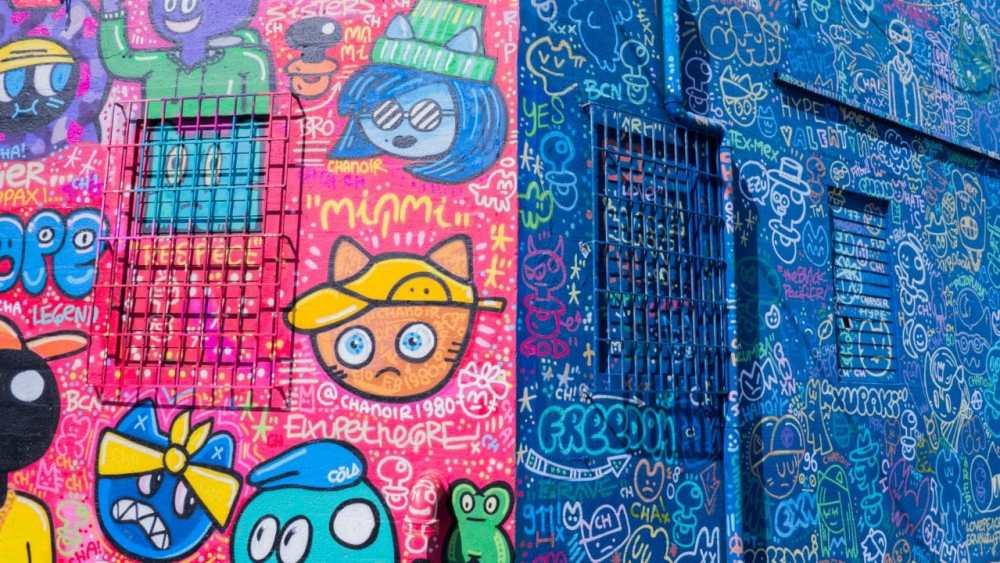 miami, wynwood art district, street art
