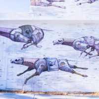 les murs de Wynwood Art District à Miami