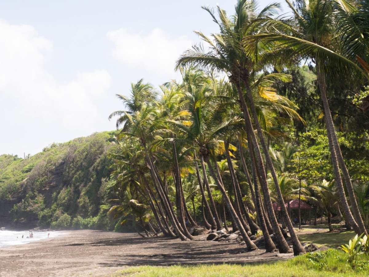 et que fait-on à la pointe la plus au sud de l'île ...?