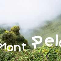 le jour où nous avons voulu voir le sommet du Mont Pelé