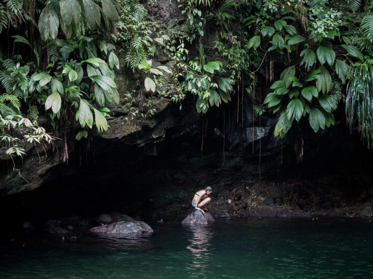 dans cet écrin tropical il y a le Bassin Paradise