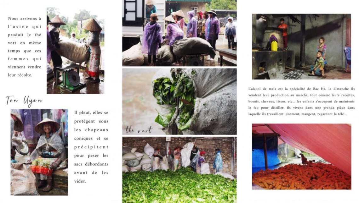 vietnam, montagnes du nord, rizières, ethnies minoritaires, asie, journal du vietnam