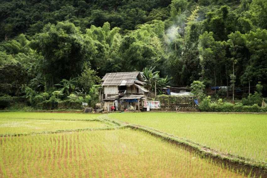vietnam, ethnies minoritaire, rizières, vallée de mai chau