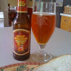 16. Michelob – Hop Hound Amber Wheat Ale