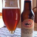 Dogfish Head Punkin pumpkin Ale