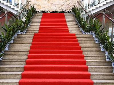 Vs House Of Carpets Your Flooring Headquarters   Outdoor Carpet For Stairs   Navy Pattern   Artificial Grass   Front Entrance   Heavy Duty   Mosaic