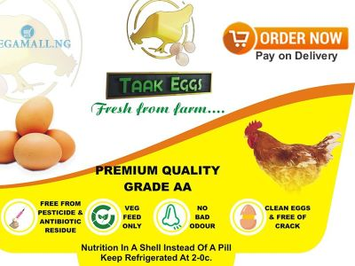 wholesale eggs for sale in Lagos