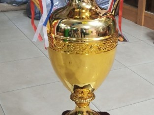Giant Trophy Cup For Sale In Nigeria.
