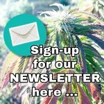 Join Our Cannabis Newsletter