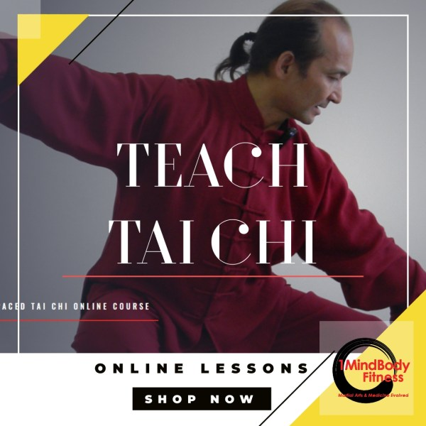teach tai chi online lessons