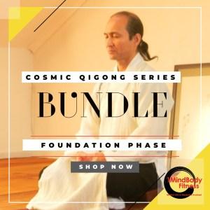 cosmic bundle series
