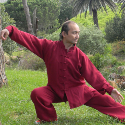 Yang Tai Chi Quan