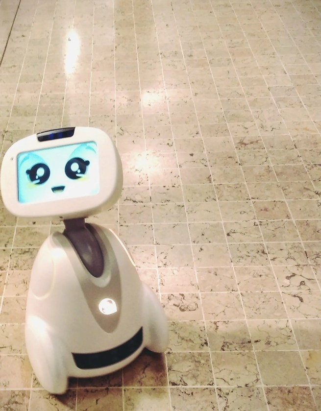 Buddy Robot Companion