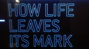 How Life leaves its Mark