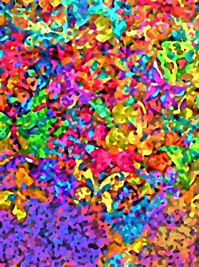 Butterfly farandole