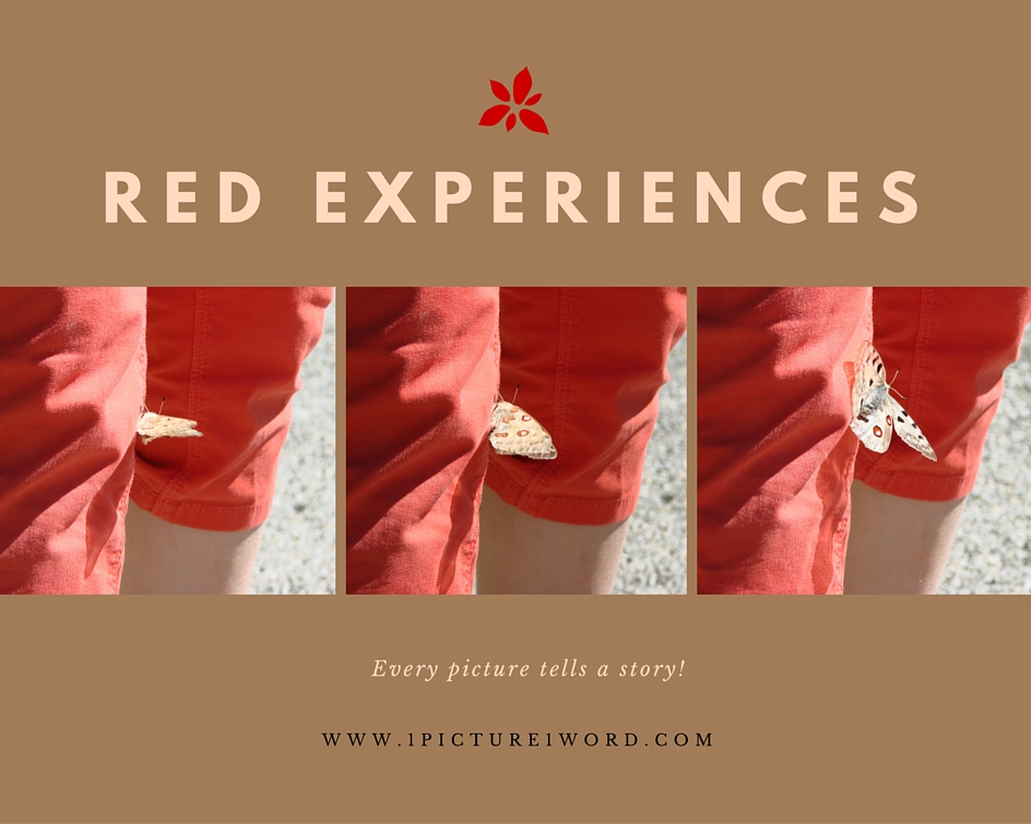 Red Experiences