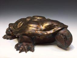 Tortoise_by_Trudy_Skari