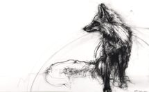 Montana-Red-Fox-by-April-Coppini