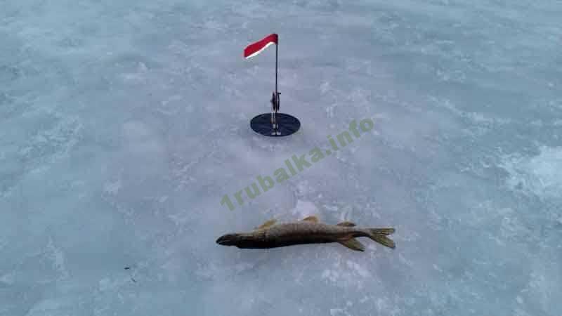 Datiranje ribarskog ribnjaka