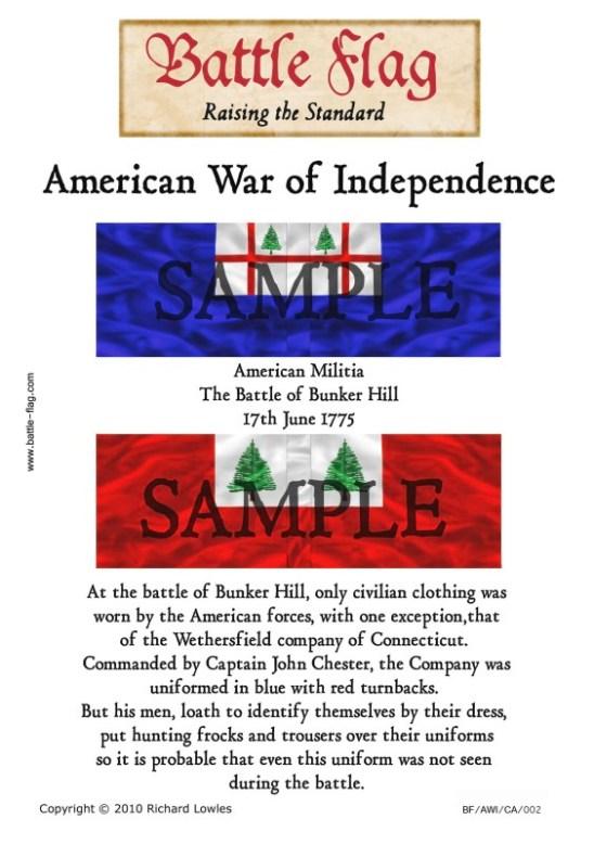AWI/CA/002 American Militia