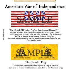 AWI/CA/004 Grand Old Union Flag, The Gadsden Flag