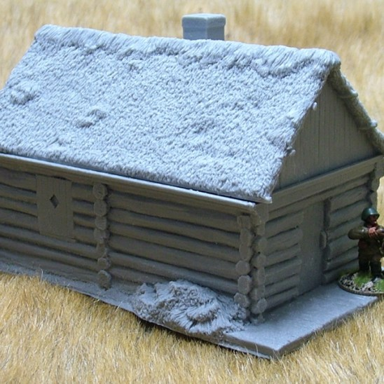 Large cabin with thatch roof