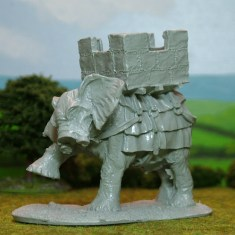 28mm EL, G. African Elephant