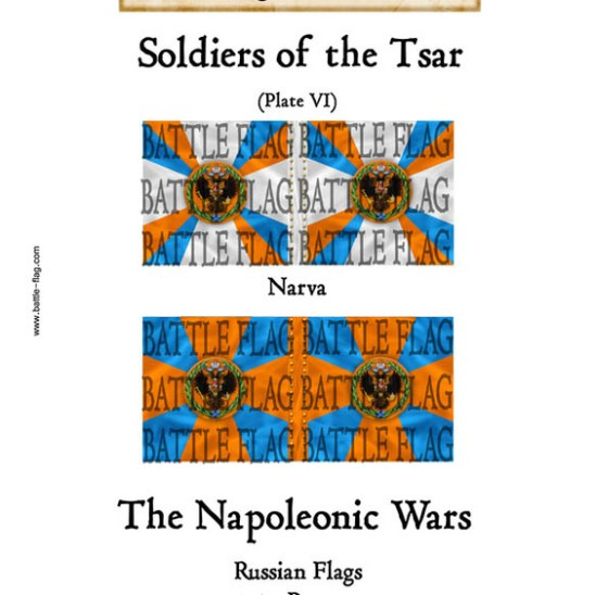 Musketeer Regiment Narva(Plate VI)