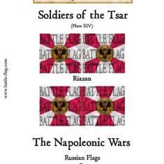 Musketeer Regiment Riazan(Plate XIV)