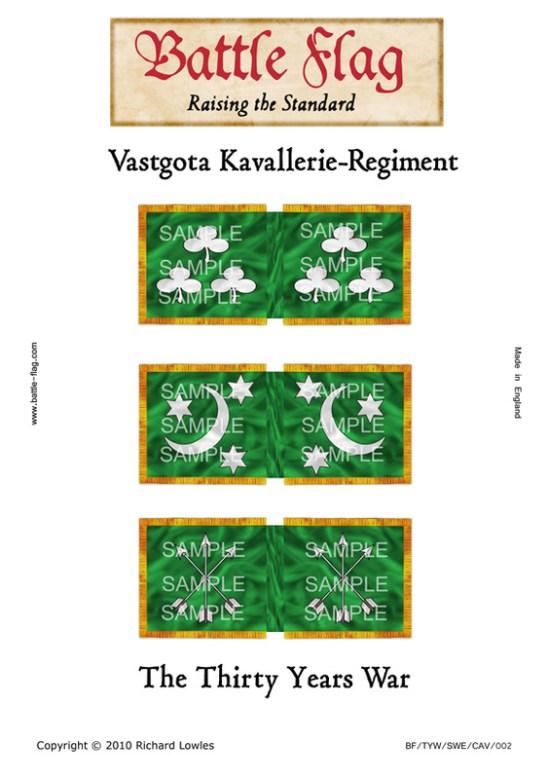(e) Swedish Cavalry