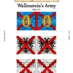 Wallenstein V