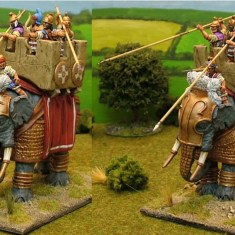 28mm armoured macedonian successor indian elephants
