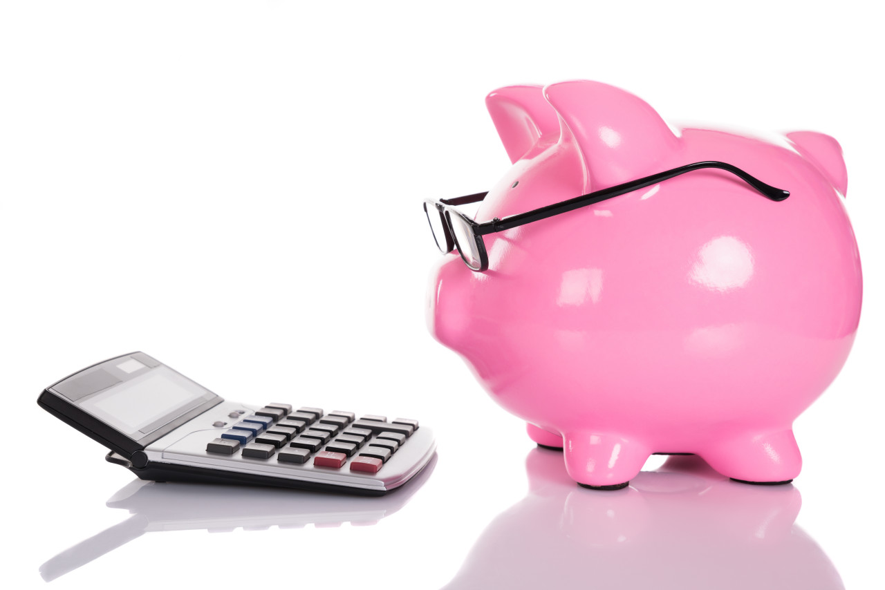 Affordable-Dental-Care-Is-Within-Your-Budget-Piggy-Bank-e1436531687205.jpg (1280×854)