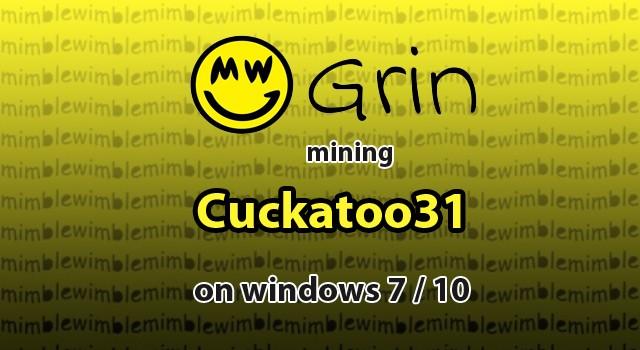 How to Mine Grin Cuckatoo31+ on Windows 7 / 10 - 1st Mining Rig