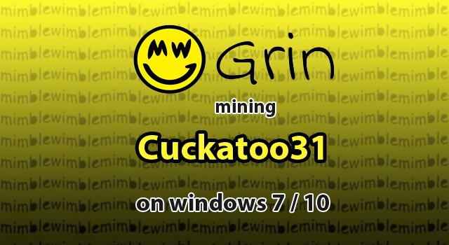 How to Mine Grin Cuckatoo31+ on Windows 7 / 10 - 1st Mining Rig