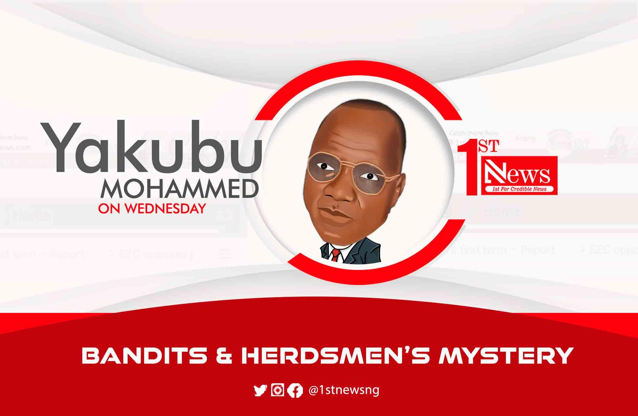 Bandits & herdsmen's mystery – Yakubu Mohammed