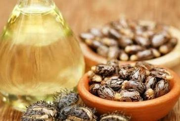 Health benefits of castor oil and its uses