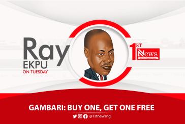 Gambari: Buy one, get one free - Ray Ekpu