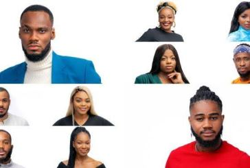 BBNaija 2020: Meet the Lockdown housemates