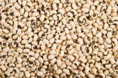 Beans, Legumes highest in protein