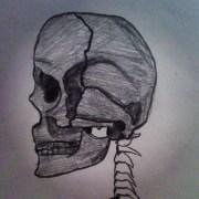Skull I drew