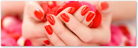 Illinois Nail Technician Cosmetology Continuing Education License Renewal Course