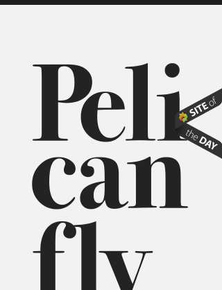 Pelicanfly-2-responsive-web-design-showcase