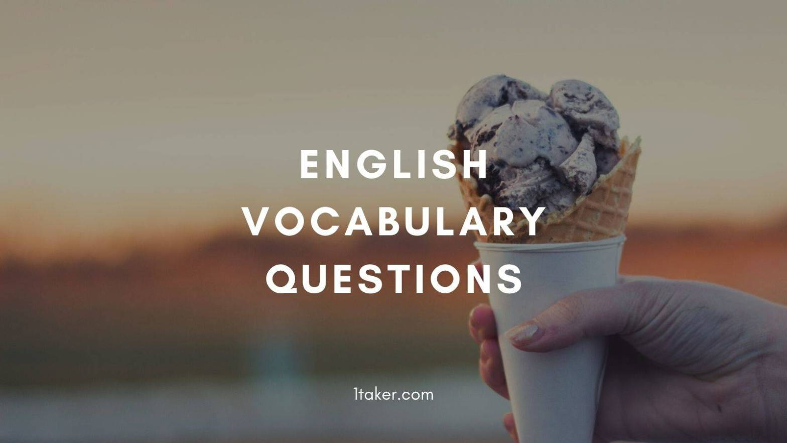 english vocabulary sample questions